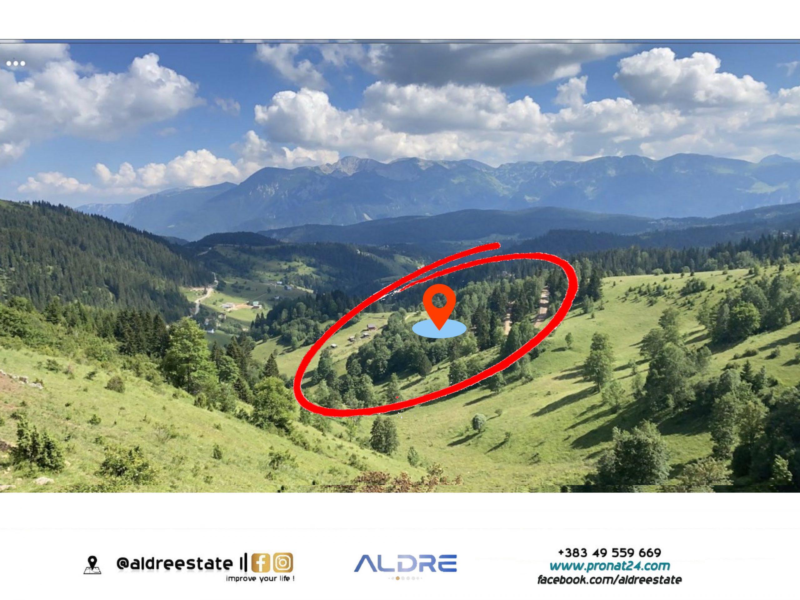 Shitet parcella 2 hektar në Shkrel, Rugovë
